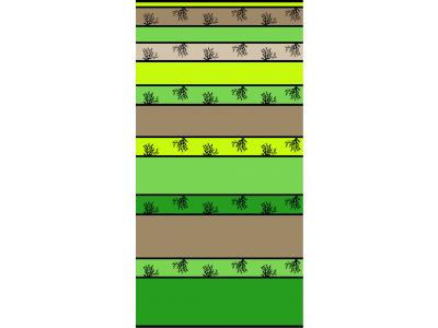 Telo Mare Corallo Stripe Degrade Green