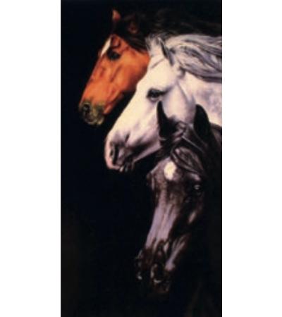 Telo Stampato 3 Cavalli